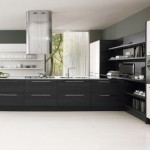 Black and White Kitchen Cabinets contrast design