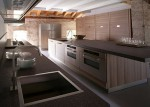 Contemporary Fiamma kitchen use smooth cabinet fronts banded with stripe dark grain