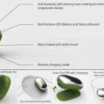 Dishwashing beetle with nanotechnology eliminate contamination of waters