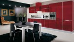 Glossy Kitchens Design pictures with polished aluminum frame