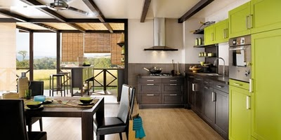 Green kitchen design signal of wealth prosperity and growth for who love bright colors