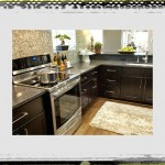 Inspiring Kitchen Assesories Fresh On Black Cabinets Subject Plus Accessories kitchen ideas accessories