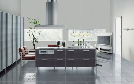 Japanese Tayo kitchen designs metal kitchens were impressive