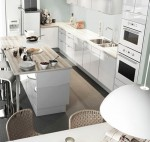 Kitchen Designs picture Ideas 2011 by IKEA in modern kitchen style