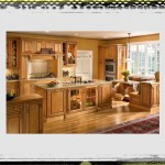 Maple Cabinets Kitchen Ideas kitchen ideas maple