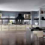Modern classic kitchen design based on a huge, iconic Yin Yang symbol with black and white area