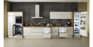 Modular Fridge picture ideas to store your food called divide and cool