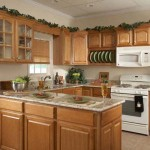 Oak Kitchen cabinets for your Interior kitchen minimalist modern Design