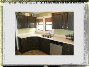 Painting Kitchen Cabinets Regarding Kitchen Ideas Painted Cabinets Burhan Home Design kitchen ideas cabinets