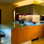 ThinkGlass created personalize kitchen use glass kitchen countertops beautiful pattern