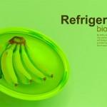 apartment size refrigerator with Bio Robot Refrigerator by Yuriv Dmitriev