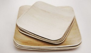 biodegradable plates made from natural material in ecologically design