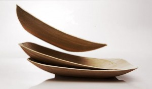 biodegradable plates made from natural materials in ecologically designs