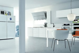 contemporary simple kitchen style with a minimum clutter