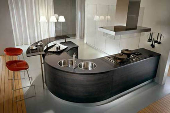 ergonomic kitchen design like J shape has dramatic contrasts color for international market