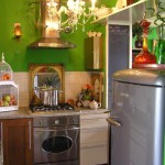 funky small kitchen with green wall
