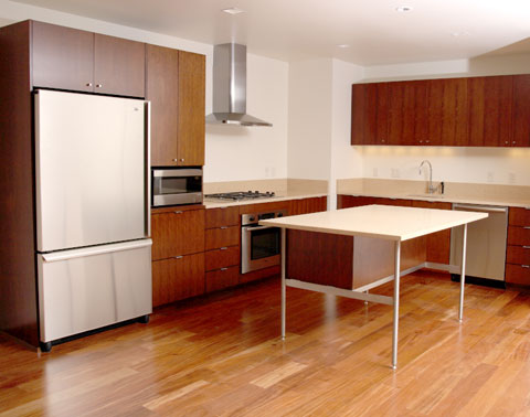 minimal design of this kitchen island takes up very little visual space