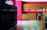 minimalism kitchens style with Zebrano wood easy to fit into your kitchen
