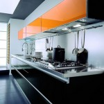 modern cosmopolitan kitchen is simple and minimalist