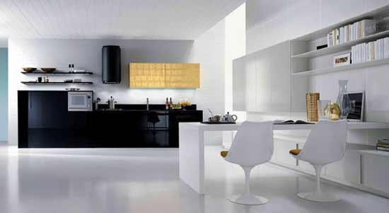 Modern kitchen design black and white color combination