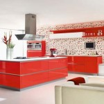 Trendy kitchen design with fresh red colorful theme